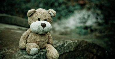 close-up-macro-teddy-bear-105531