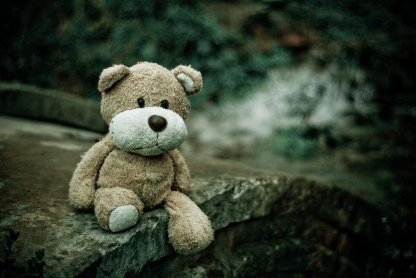 close-up-macro-teddy-bear-105531